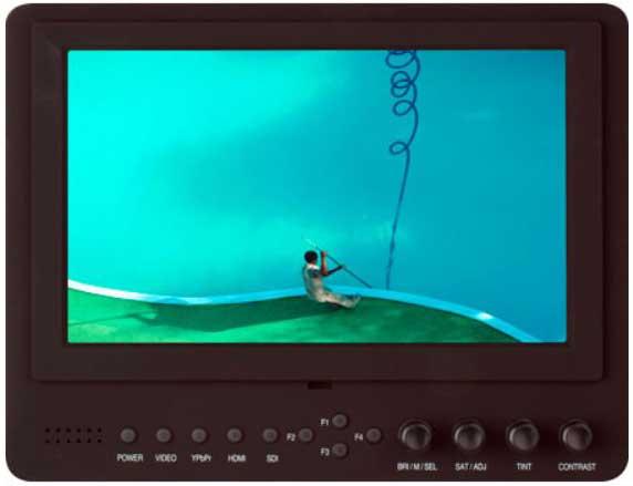Video camera monitor